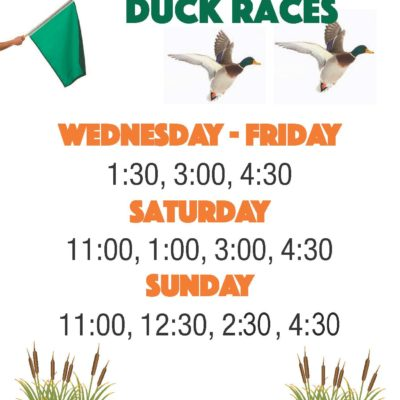 Great American Duck Races